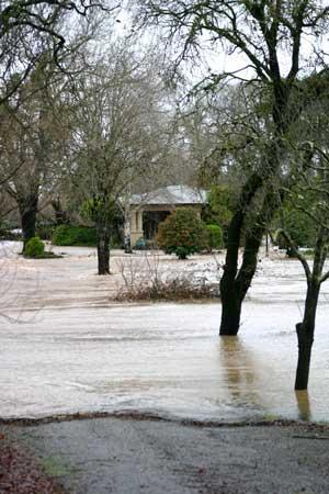 Insurance Claim Estimates #MarkupAndProfit #ConstructionBusinessManagement